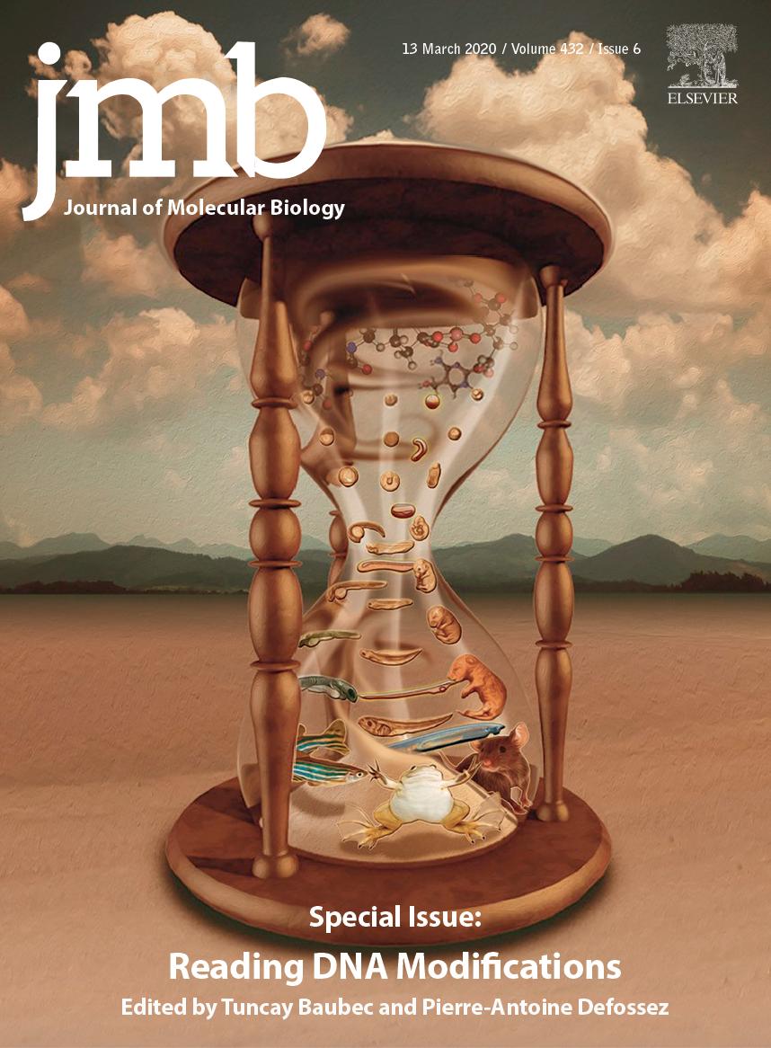 JMB_cover